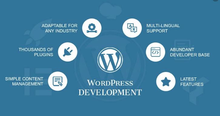 Cara membuat website dengan wordpress bagi pemula – Kenapa Kita menggunakan Wordrpess